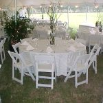 Simple setting with tall branchy centerpieces, white party chairs, and white stripe tablecloths